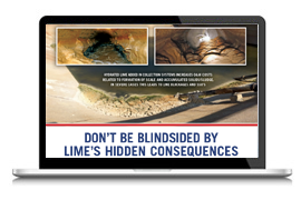 Don't Be Blindsided by Lime's Hidden Consequences